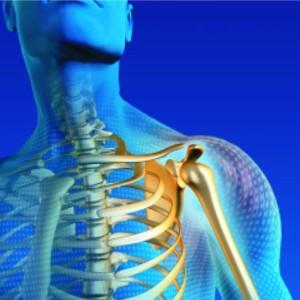 Comprehensive Evaluation Management and Treatment of Shoulder Dysfunction